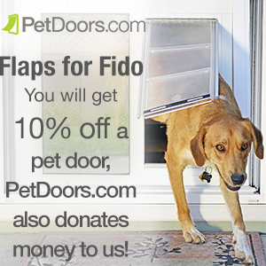 flapsforfido_photo_300x300